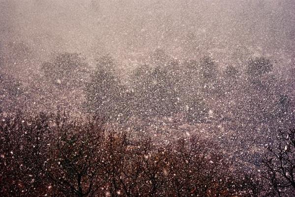 весенний снег в Крыму